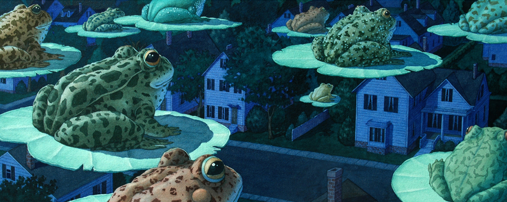 """Illustration in """"Tuesday"""" by David Wiesner"""